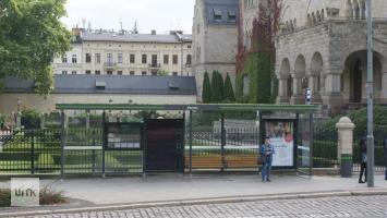 Przybywa zielonych dachów na przystankach. Widzieliście je? (ZDJĘCIA)