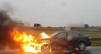 Samochód spłonął na S11 - zobacz video